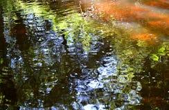Flodreflexion Arkivbilder