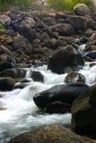 flodrocks Arkivbilder
