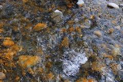 Flodsäng med steniga stenar royaltyfri foto