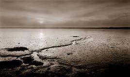 flodscotland solnedgång tay uk Arkivbilder