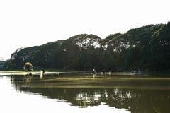 Flodsidosikt på morgonen Arkivfoto
