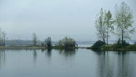 Flodsikt i staden, reflexion av träd i vatten Fotografering för Bildbyråer