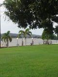 Flodsikten från parkerar Innisfail Queensland Royaltyfria Bilder