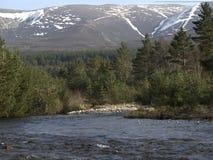 Flodspring in i fjorden Morlich, Avimore Arkivfoton