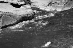 Flodstenar i vattnet Arkivfoton