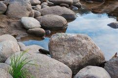 Flodstenar med grönt gräs Arkivfoto