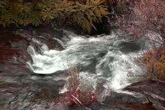 Flodström i höstfärger Arkivfoto