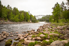 Flodström i stenig miljö i skogen med en bro i bakgrunden Arkivfoton