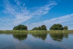 Flodstrand av Donauen Arkivfoton