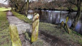 Flodstranden går, Culver, Derbyshire, UK fotografering för bildbyråer