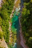 FlodTara kanjon - Montenegro Royaltyfri Bild