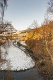 Floduniversitetslärare nära Strathdon i Aberdeenshire, Skottland Royaltyfria Bilder