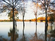 flodvatten Arkivbilder
