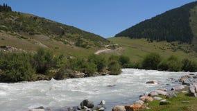 Flodvatten som flödar i bergdalen på kullar och skog för bakgrund gröna stock video