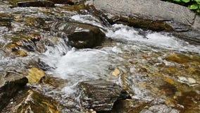 Flodvatten som flödar i en nära sikt med kiselstenar lager videofilmer