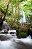 flodvattenfall Royaltyfri Foto