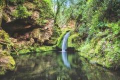 Flodvattenfall i djungelinre Fotografering för Bildbyråer