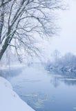 flodvinter Royaltyfri Bild