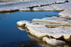 Floe. In the forest river royalty free stock images
