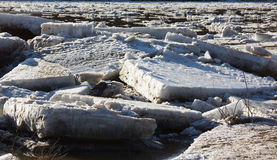 Floe. A floe in the river Stock Image