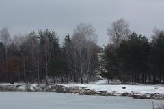 floe Στοκ Φωτογραφίες