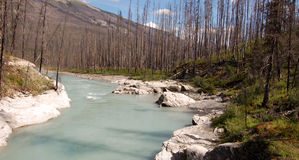 Floe Creek Stock Photo