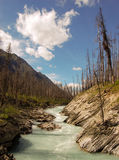 Floe Creek. In Kootenay National Park, Canada Royalty Free Stock Photo