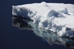 Floe de gelo Fotografia de Stock