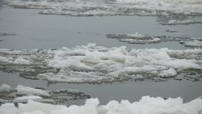 Floe floating. Floating of floe close to camera in motion stock video