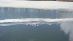 Floe floating on river in spring, melting of ice on the river stock footage