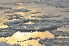 Floe flowing river. The middle of winter. The riverbed. Low temperatures. In frosty day stock images