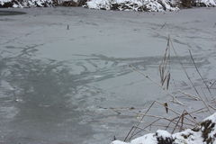 Floe. In the lake in winter Royalty Free Stock Photography