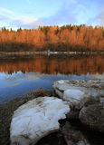 Floe on the river in the forest Stock Images