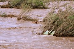Flood. Desert wash that flooded after heavy rainfall Stock Images