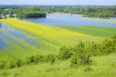 Flood. Fields near the river during spring flood stock images