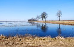 Flood. On a meadow with early spring, Photo taken in Lithuania, Europe stock photography
