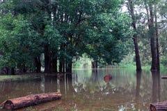 Flood Stock Photo