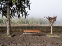 After the flood - bench, trees and mud Royalty Free Stock Photos