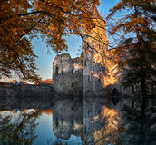 Flood and castle Royalty Free Stock Image