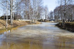 The flood in the countryside on a spring day. Royalty Free Stock Image