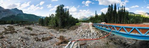 Flood Damage. On a mountain stream Kananaskis Country Alberta Canada, 2013 Royalty Free Stock Photo