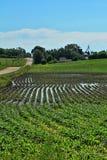 Flood Damaged Field stock photo