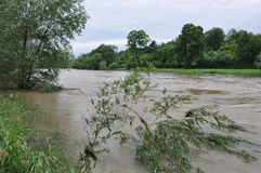 Flood. Danube flood near Ulm, Germany royalty free stock photo