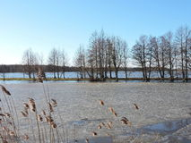 Flood in field Royalty Free Stock Photography