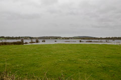 Flood field Stock Photos