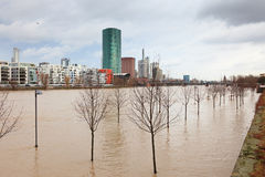 Flood in Frankfurt Royalty Free Stock Photography