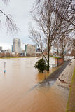 Flood in Frankfurt Stock Photo