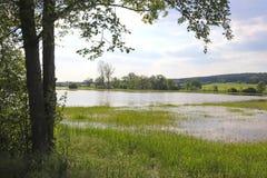 Flood of green springtime meadows. Flood in a valley with green springtime meadows and trees royalty free stock photos