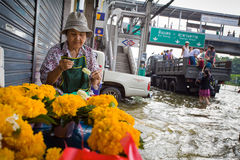 Flood hits Central of Thailand Royalty Free Stock Photo