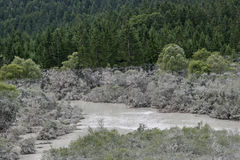 After the flood. Isar near Lenggries after the flood - the polluted trees indicate the height of the water level royalty free stock photography